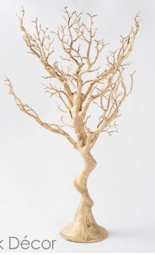 Gold Manzanita Tree Image