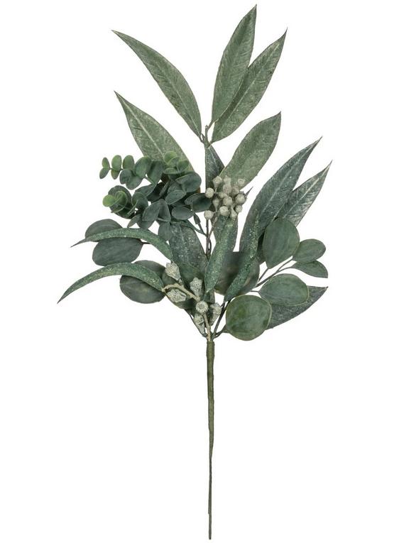 Large Eucalyptus Pick Image